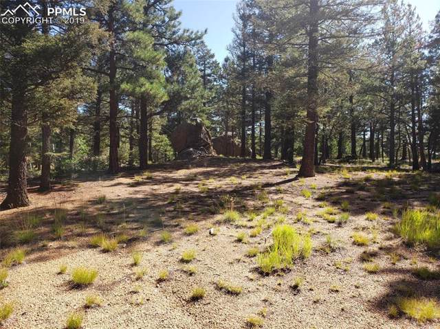 6055 Big Horn Road, Manitou Springs, CO 80829 (#7166289) :: 8z Real Estate