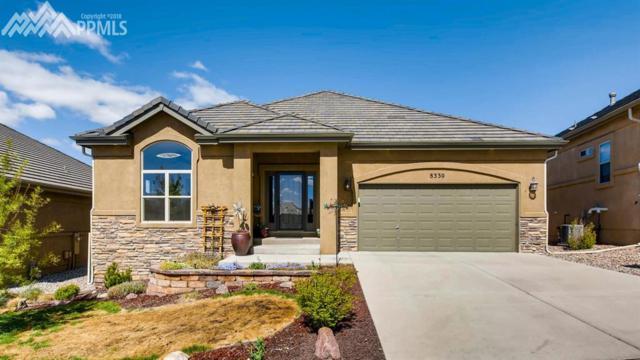 8330 Regiment Court, Colorado Springs, CO 80920 (#7169691) :: 8z Real Estate