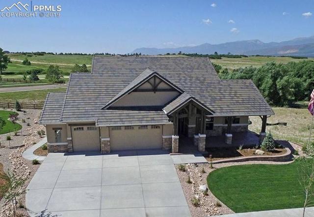 1887 Redbank Drive, Colorado Springs, CO 80921 (#7171026) :: Colorado Home Finder Realty