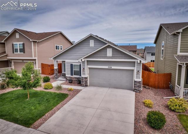 7556 Shallow Brooke Place, Colorado Springs, CO 80922 (#7171189) :: Fisk Team, RE/MAX Properties, Inc.