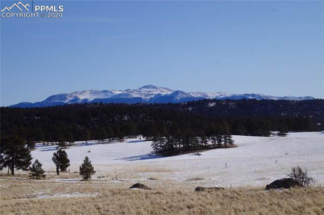 2660 Slater Creek Road, Florissant, CO 80816 (#7172161) :: 8z Real Estate