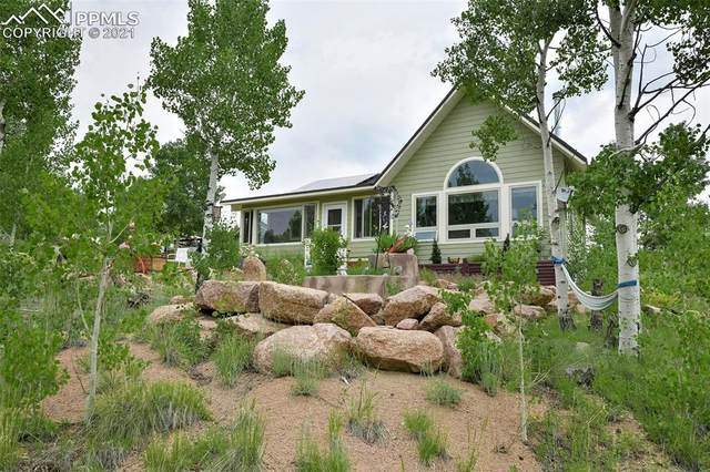 78 Cheyenne Way, Florissant, CO 80816 (#7172420) :: Compass Colorado Realty