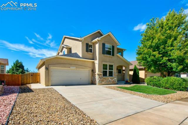 6965 Amber Ridge Road, Colorado Springs, CO 80922 (#7172451) :: 8z Real Estate