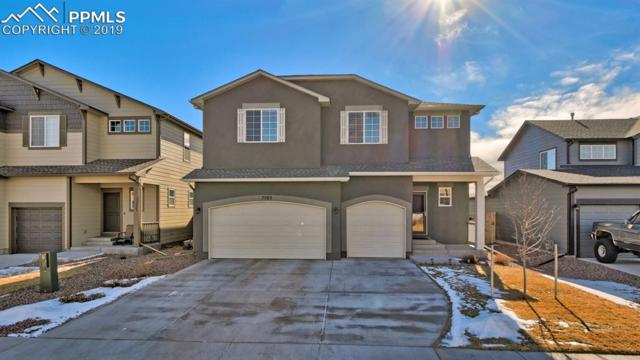 7593 N Sioux Circle, Colorado Springs, CO 80915 (#7172884) :: CENTURY 21 Curbow Realty