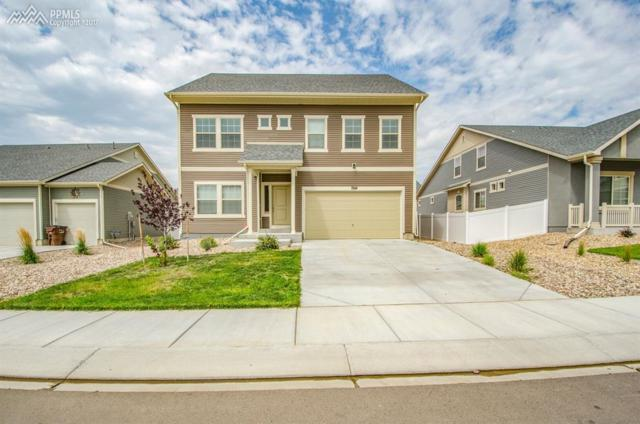 7924 Moondance Trail, Fountain, CO 80817 (#7173176) :: 8z Real Estate