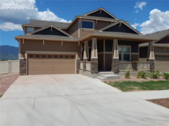 1370 Alveston Street, Colorado Springs, CO 80910 (#7175264) :: 8z Real Estate