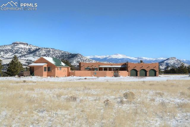 5922 County 102 Road, Guffey, CO 80820 (#7177550) :: Jason Daniels & Associates at RE/MAX Millennium