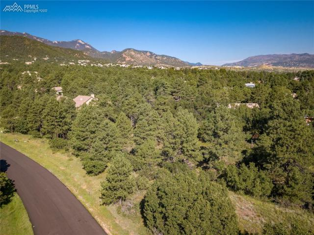 1720 Brantfeather Grove, Colorado Springs, CO 80906 (#7178510) :: 8z Real Estate
