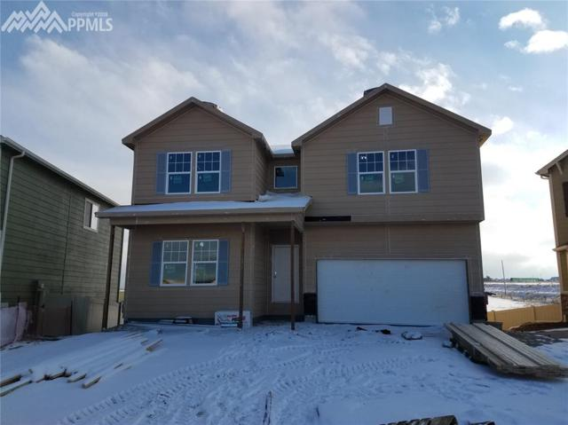 8054 Misty Moon Drive, Colorado Springs, CO 80924 (#7180433) :: The Daniels Team