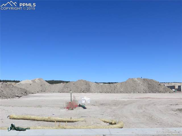 10163 Hannaway Drive, Colorado Springs, CO 80924 (#7182523) :: The Treasure Davis Team