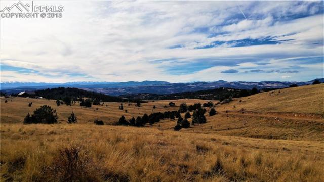 TBD County 89 Road, Cripple Creek, CO 80813 (#7182716) :: The Kibler Group