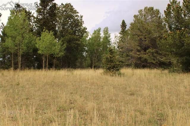 000 County Road 61 Road, Cripple Creek, CO 80813 (#7182928) :: Finch & Gable Real Estate Co.