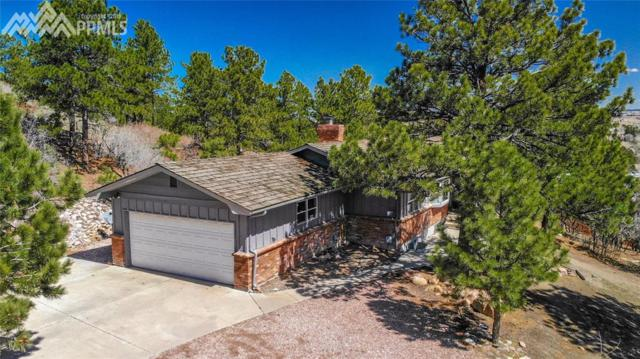 7045 Buckhorn Circle, Colorado Springs, CO 80919 (#7189461) :: Action Team Realty
