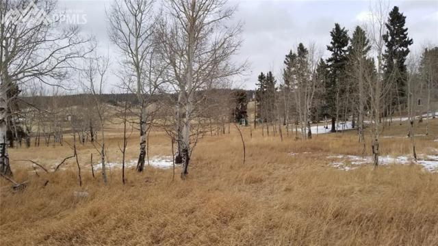 247 Will Scarlet Drive, Divide, CO 80814 (#7189858) :: 8z Real Estate