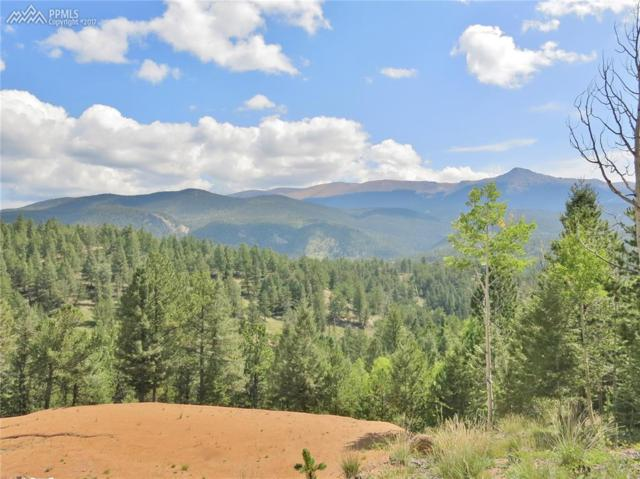 448 Woodrock Way, Divide, CO 80814 (#7197531) :: 8z Real Estate