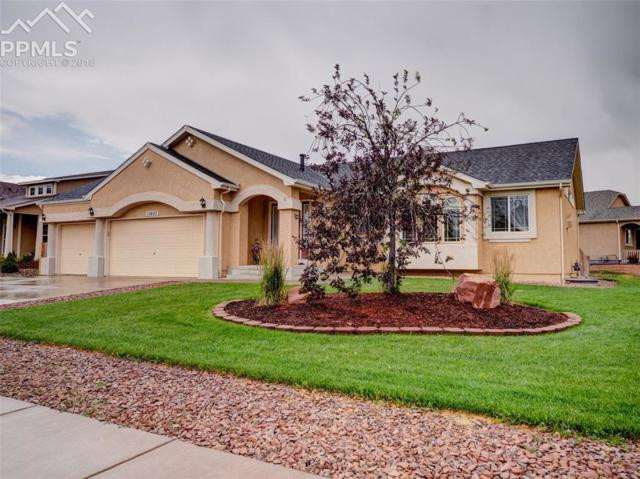 10497 Mile Post Loop, Fountain, CO 80817 (#7199330) :: The Kibler Group