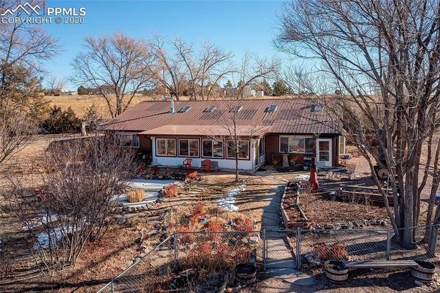 3610 Curtis Road, Peyton, CO 80831 (#7201167) :: Tommy Daly Home Team