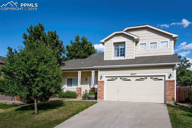 6665 Quarter Circle, Colorado Springs, CO 80922 (#7202344) :: Tommy Daly Home Team