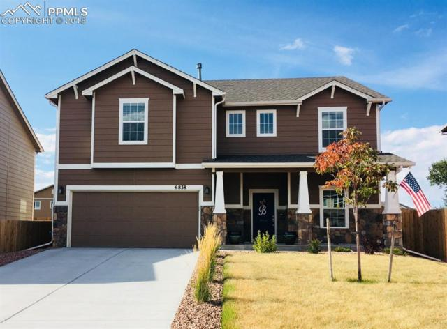 6838 Spruce Hill Court, Colorado Springs, CO 80923 (#7203780) :: 8z Real Estate