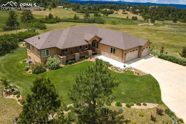 14197 Furrow Road, Larkspur, CO 80118 (#7210399) :: The Treasure Davis Team