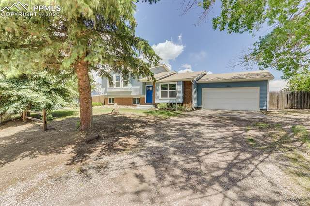 321 Buttonwood Court, Monument, CO 80132 (#7213612) :: The Harling Team @ Homesmart Realty Group