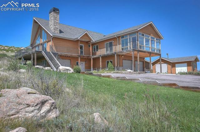 5065 Eckhardt Circle, Elbert, CO 80106 (#7216224) :: 8z Real Estate