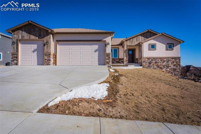 5521 Copper Drive, Colorado Springs, CO 80918 (#7219166) :: Action Team Realty