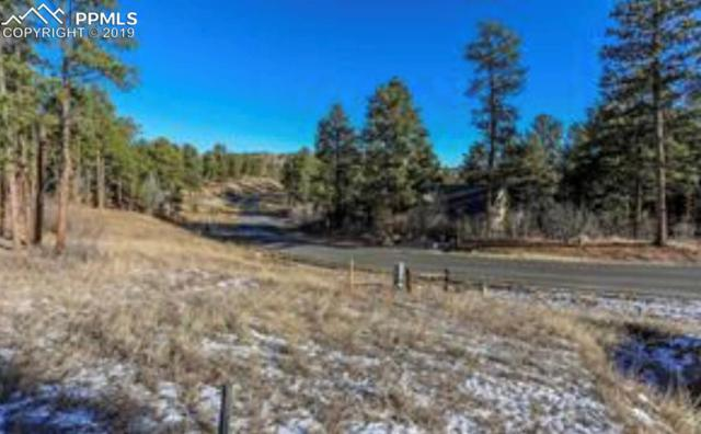 4180 Cheyenne Drive, Larkspur, CO 80118 (#7225236) :: Tommy Daly Home Team