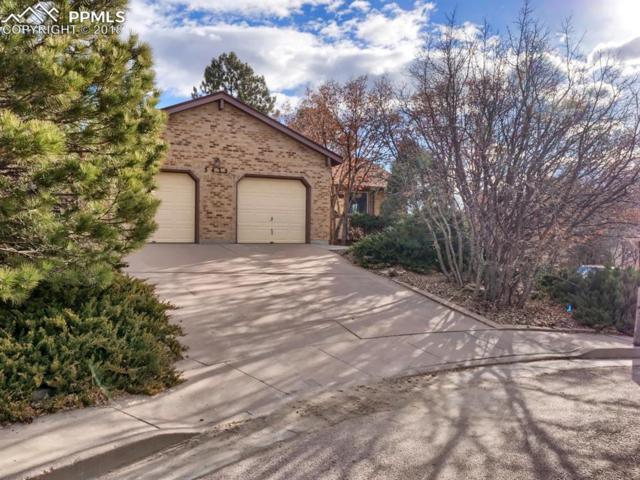 5435 Setters Way, Colorado Springs, CO 80919 (#7226097) :: The Daniels Team