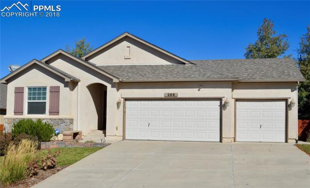266 All Sky Drive, Colorado Springs, CO 80921 (#7228160) :: The Hunstiger Team