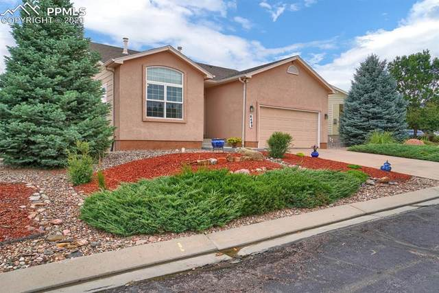 6495 Perfect View, Colorado Springs, CO 80919 (#7230461) :: Tommy Daly Home Team