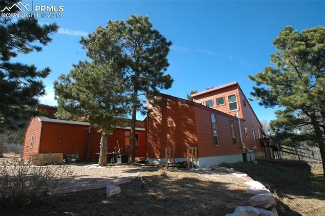 4620 Sandstone Drive, Monument, CO 80132 (#7238727) :: Perfect Properties powered by HomeTrackR