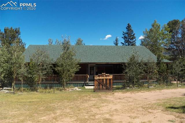 10665 S Highway 67 Highway, Cripple Creek, CO 80813 (#7240612) :: The Daniels Team
