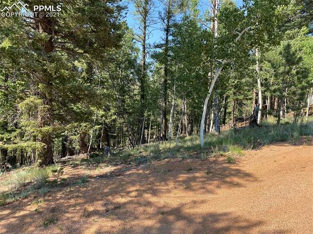 111 &117 May Queen Circle, Cripple Creek, CO 80813 (#7241823) :: Fisk Team, eXp Realty