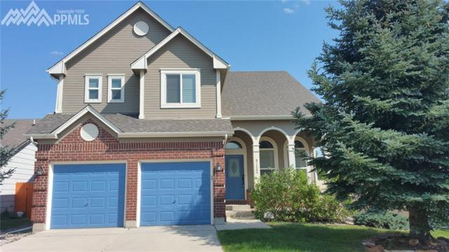 9133 Prairie Clover Drive, Colorado Springs, CO 80920 (#7243948) :: 8z Real Estate