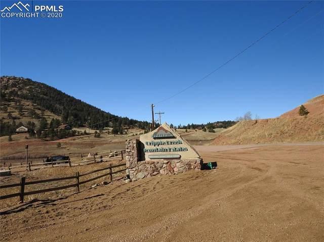 94 E Mariposa Circle, Cripple Creek, CO 80813 (#7250379) :: The Treasure Davis Team