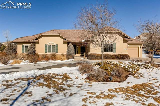 9741 Pinnacle Knoll Court, Colorado Springs, CO 80920 (#7250615) :: Fisk Team, RE/MAX Properties, Inc.