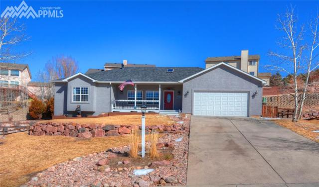 15505 Curwood Drive, Colorado Springs, CO 80921 (#7255976) :: The Treasure Davis Team