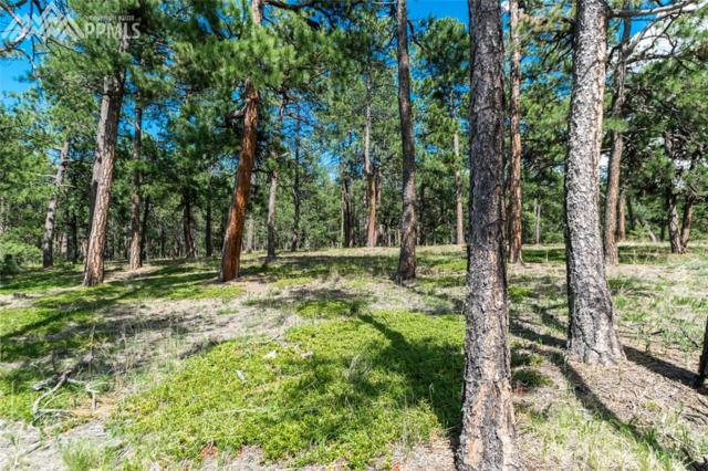 19324 Hilltop Pines Path, Monument, CO 80132 (#7256517) :: 8z Real Estate