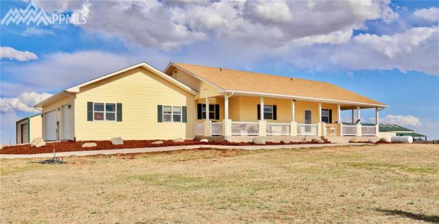 4015 E Blaney Road, Falcon, CO 80831 (#7256707) :: The Treasure Davis Team