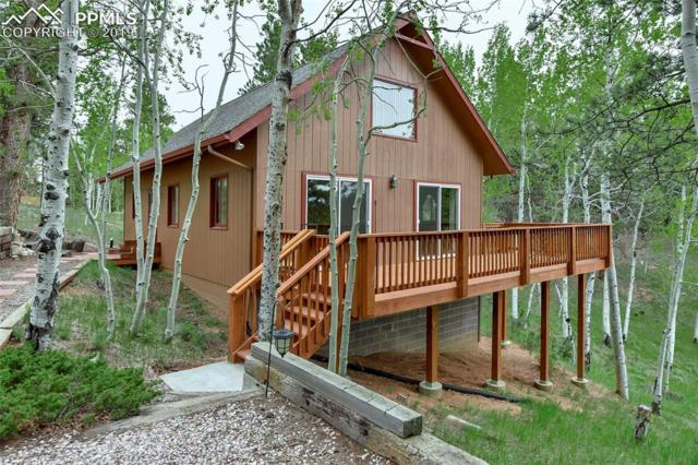 24 Valley Circle, Divide, CO 80814 (#7257318) :: Fisk Team, RE/MAX Properties, Inc.