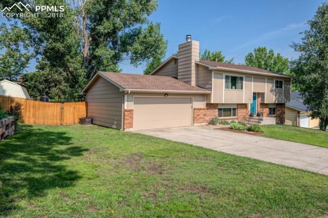 6330 Lemonwood Drive, Colorado Springs, CO 80918 (#7261965) :: Jason Daniels & Associates at RE/MAX Millennium