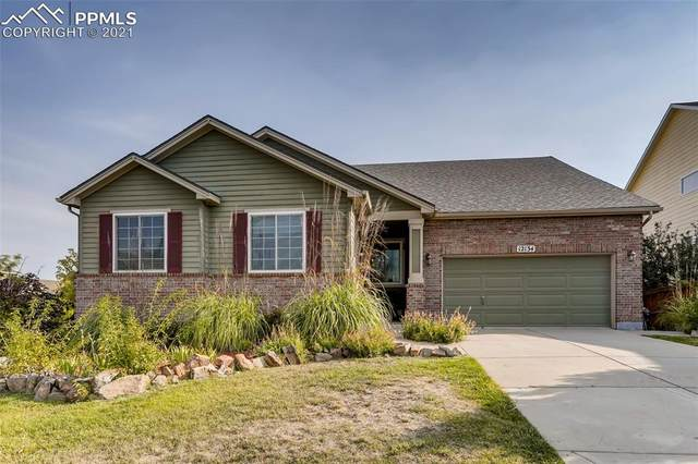 12134 S Great Plain Way, Parker, CO 80134 (#7262004) :: Tommy Daly Home Team