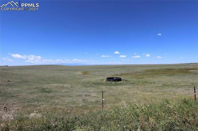6650 Calhan Road, Calhan, CO 80808 (#7262939) :: Tommy Daly Home Team