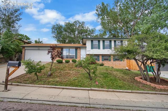 6445 Lehman Drive, Colorado Springs, CO 80918 (#7263995) :: Colorado Home Finder Realty