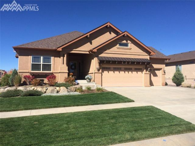 6012 Leon Young Drive, Colorado Springs, CO 80924 (#7264111) :: The Daniels Team