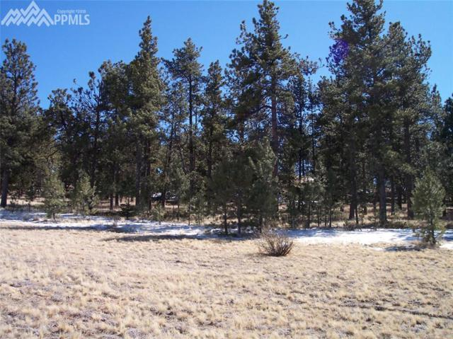 689 High Pasture Road, Florissant, CO 80816 (#7265563) :: The Treasure Davis Team