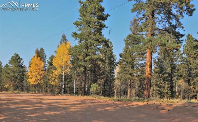451 Chipeta Creek Trail, Florissant, CO 80816 (#7272267) :: Action Team Realty