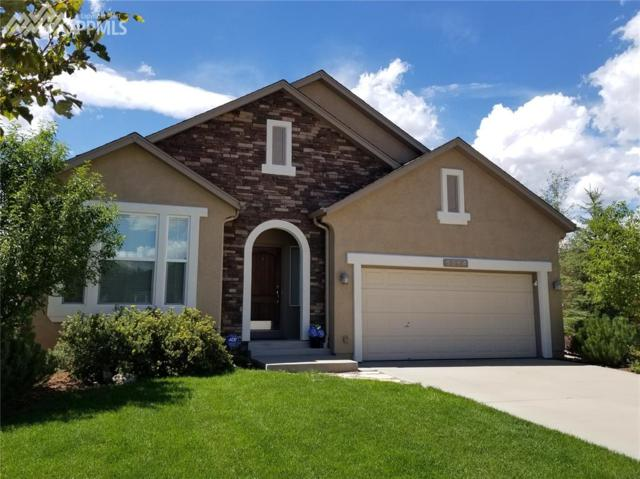 9954 San Luis Park Court, Colorado Springs, CO 80924 (#7273300) :: Jason Daniels & Associates at RE/MAX Millennium