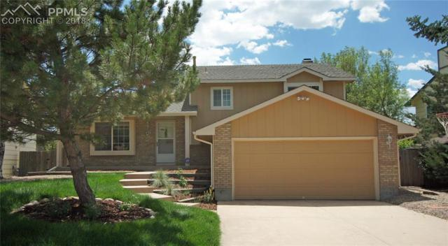 8425 Candleflower Circle, Colorado Springs, CO 80920 (#7273796) :: 8z Real Estate